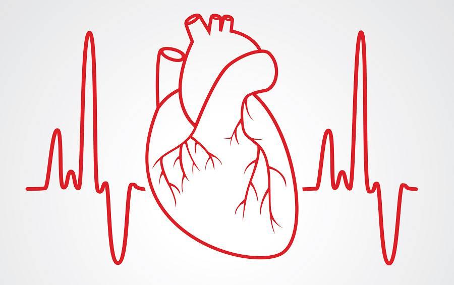 تست نوار قلب