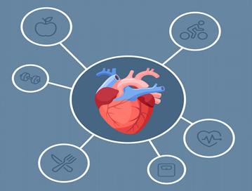 چگونه می توان از ابتلا به بزرگ شدن قلب جلوگیری کرد