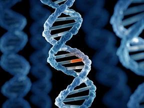هفتمین علت سکته قلبی : ژنتیک